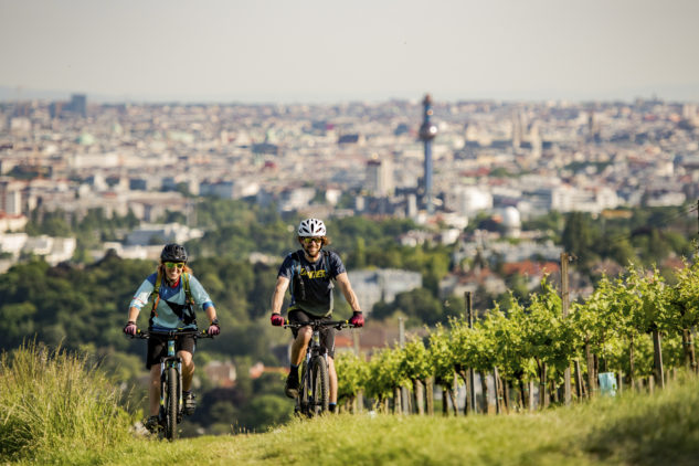 Pohoda mezi vinohrady