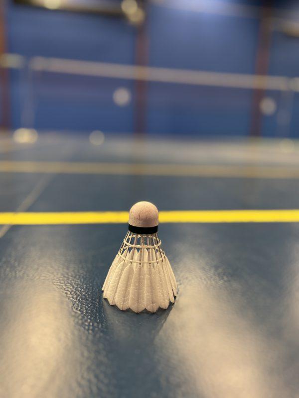 Recenze badmintonových míčů Victor Carbonsonic