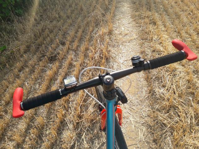 I takhle může vypadat cesta polem.