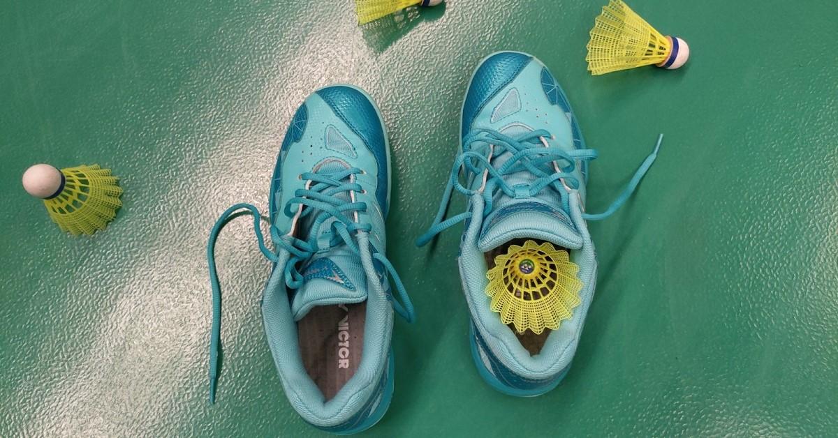 Recenze na sálové boty na badminton Victor A362 RG
